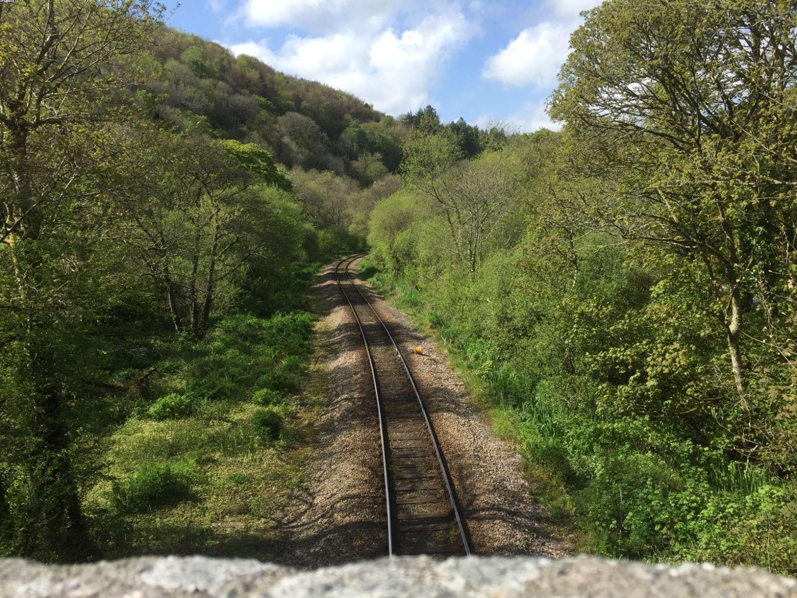 Single track Railway in Looe Valley from Sandplace Bridge